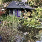 Pond Side Cottage