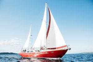 Sail Bainbridge- Stay and Sail